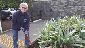 gardening at businesses
